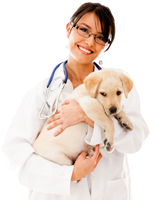 Cat and Dog - Discount for Pets at agilityRx.com